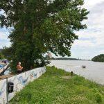 Blick auf die Donau stromabwärts, Richtung Wien
